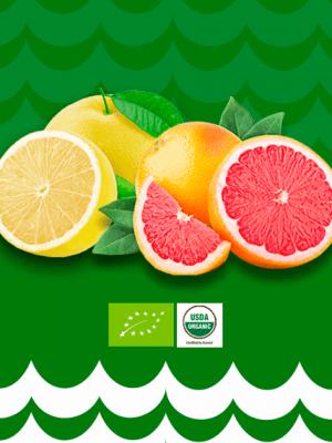 Suco de Grapefruit organico